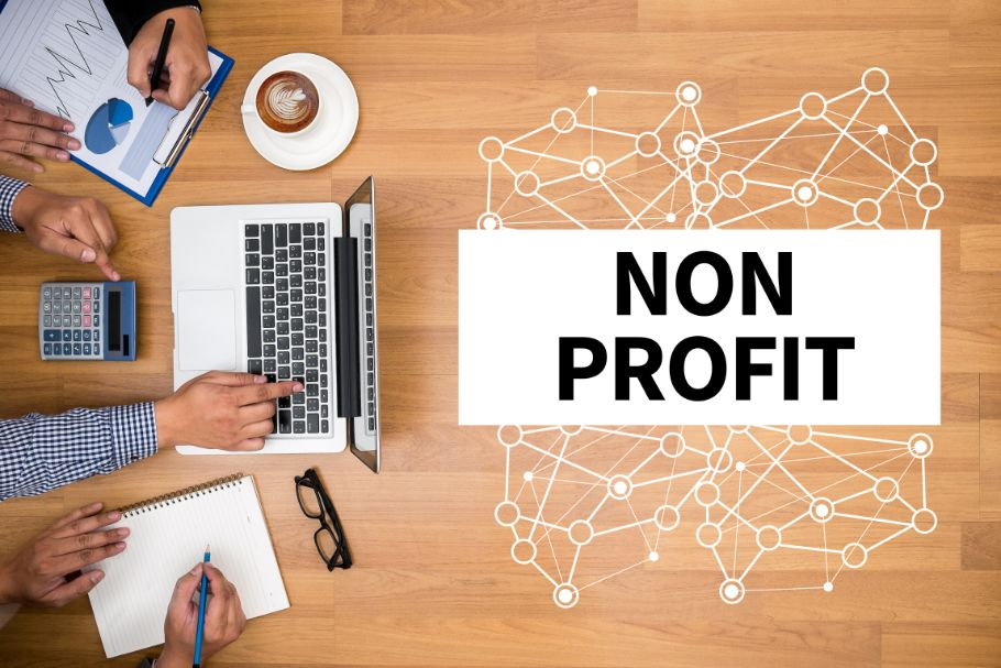Government and Nonprofit online course
